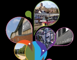 New Local Plan Themes